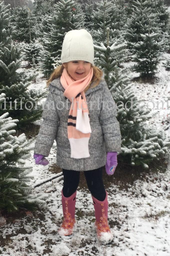 mimm - tree hunting 2015 isabella