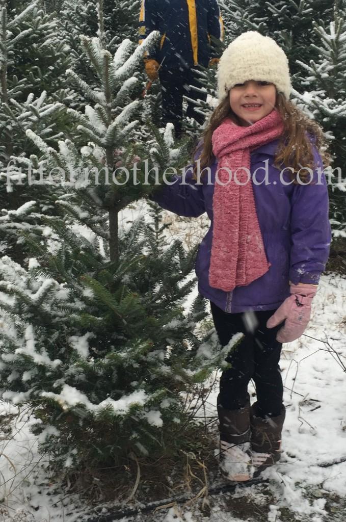 mimm - tree hunting 2015 sophia