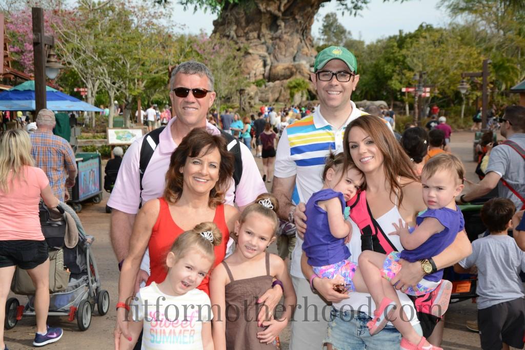 animal kingdom family 2