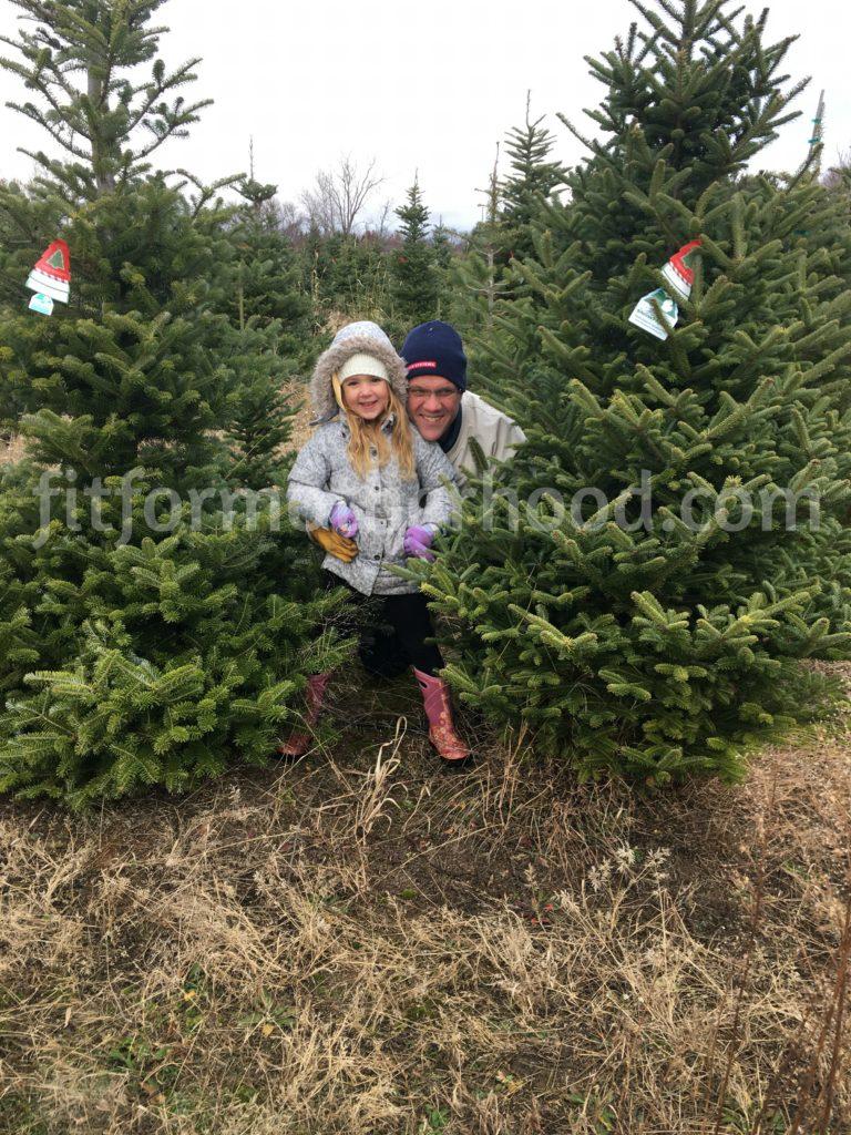 tree-cutting-2016-papa-isabella